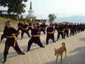Les monges de Kung fu